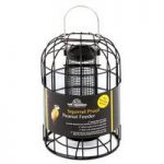Squirrel Proof Peanut Bird Feeder by Tom Chambers
