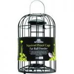 Squirrel Proof Cage Bird Fatball Feeder by Tom Chambers