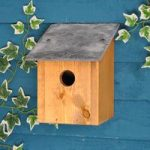 32mm Entrance Sledmere Bird Nest Box by Tom Chambers