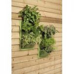 Verti-Plant Wall Planters in Leaf (Pack of 2) by Burgon and Ball