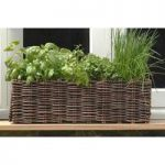 Natural Willow Window Box Planter by Burgon & Ball