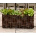 Natural Willow Salad Planter by Burgon & Ball