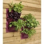 Verti-Plant Wall Planters in Aubergine (Pack of 2) by Burgon and Ball