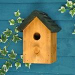 32mm Entrance Cosy Bird Nest Box – Green Roof by Tom Chambers