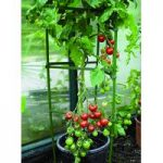 Tomato Support Cage Frames (Pack of 3) by Gardman