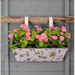 Zinc Balcony Hanging Planter with Herb Print by Fallen Fruits
