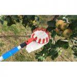 Deluxe Lightweight Telescopic Apple & Fruit Picker