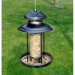 Deluxe Lantern Seed Bird Feeder by Kingfisher