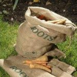 Roots and Vegetable Jute Hessian Storage Sacks by Burgon and Ball