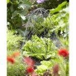 Architectural Garden Cloche Frame by Burgon & Ball