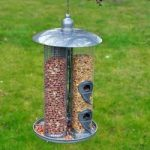 Deluxe 3 in 1 Suet Nuts and Feeds Bird Feeder Seeds by Kingfisher