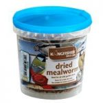 100g Tub Dried Mealworms Birdfood by Kingfisher