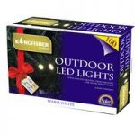 100 LED Multi-Action White String Lights (Solar) by Kingfisher