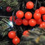 20 LED Battery Operated Red Berry Christmas String Lights