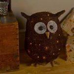 Ozzie Glow Decorative Owl With Lights (Battery) by Smart Garden