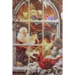 Christmas Santa Bird LED Canvas Pre Lit Decoration