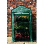 3 Tier Mini Greenhouse by Tom Chambers
