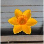 Cast Iron Daffodil Wild Bird Feeder Dish by Gardman