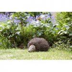 Spike Decorative Garden Hedgehog by Smart Garden