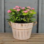 Half Barrel Garden Planter Whitewashed by Rustic Garden