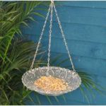 Hobnail Clear Glass Round Seed and Nut Bird Feeder by Fallen Fruits
