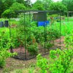 Medium Fruit Cage by Gardman