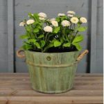 Half Barrel Garden Planter Green Washed by Rustic Garden