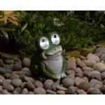 Bright Eyed 12cm Frog Spot Light (Solar) by Smart Garden